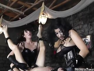 Three brunettes take turns fucking a guy with a strapon